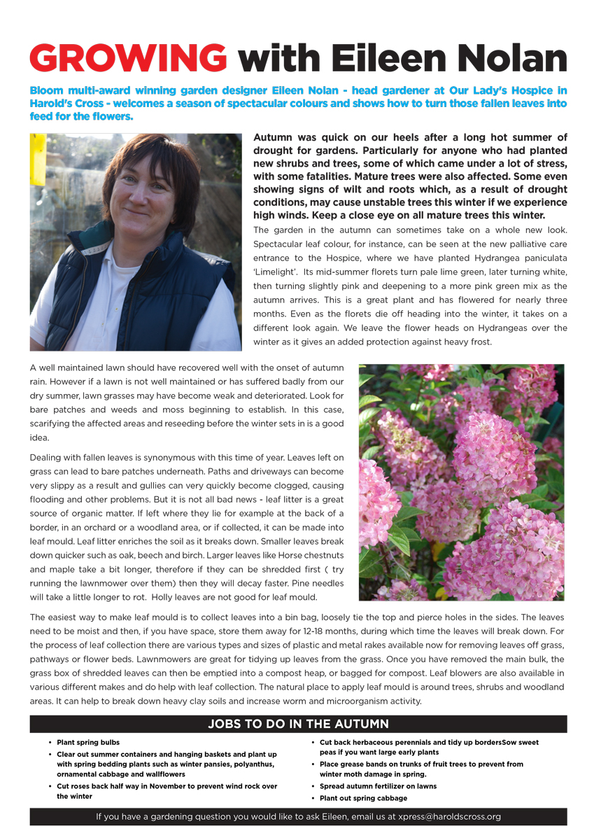 Autumn_Newsletter_2018-11