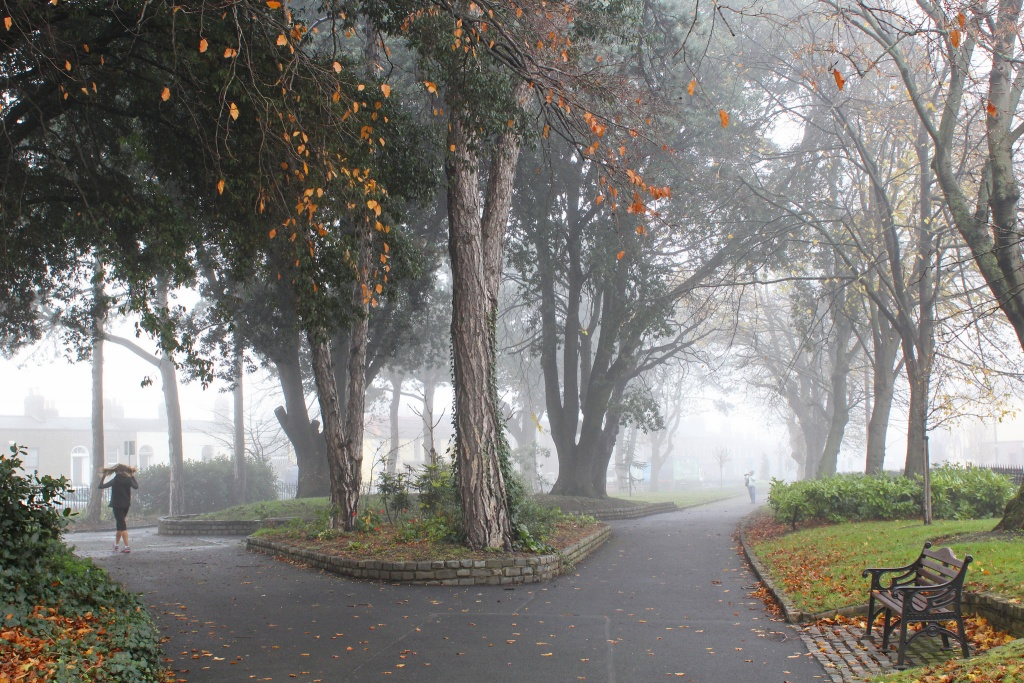 Harolds Cross Park in the mist